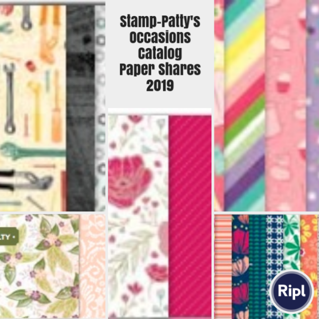 Paper shares are just that. Get a smattering of every piece of paper in the Occasions 2019 Stampin' Up! catalog