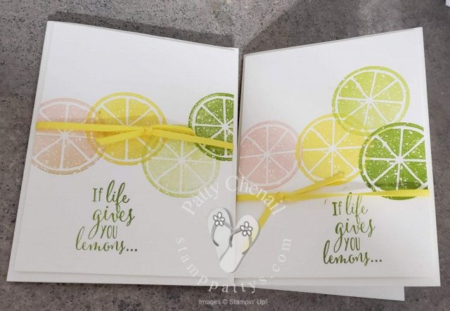 Created this simple stamping card using the Lemon Zest stamp set that is retiring on June 3, 2019.  Select some retiring colors as well!