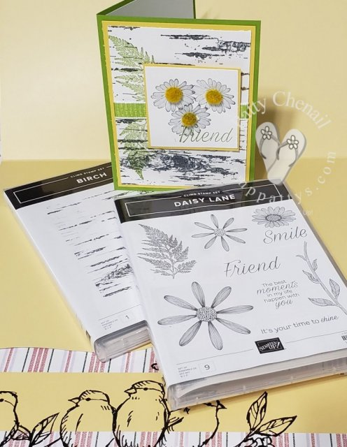 Daisy Lane stamp set was used to create this awesome project.  I enhanced the card using another new item...the Birch background stamp!  I will be showcasing this product bundle for the month of June!  Stay tuned!