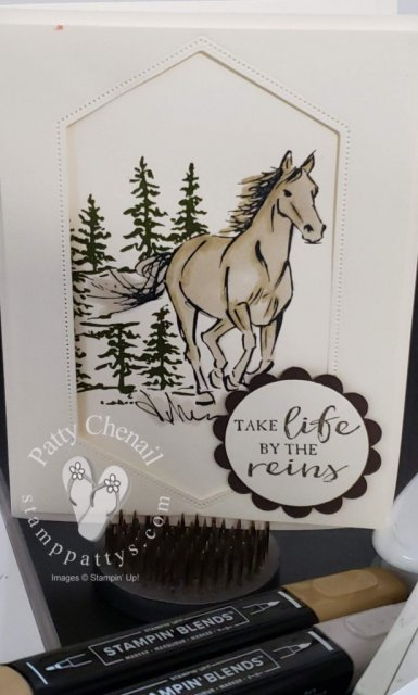 Let It Ride stamp set from Stampin' Up! combined with the Nestled Label Dies and two of our Stampin' Blends created this beautiful card!